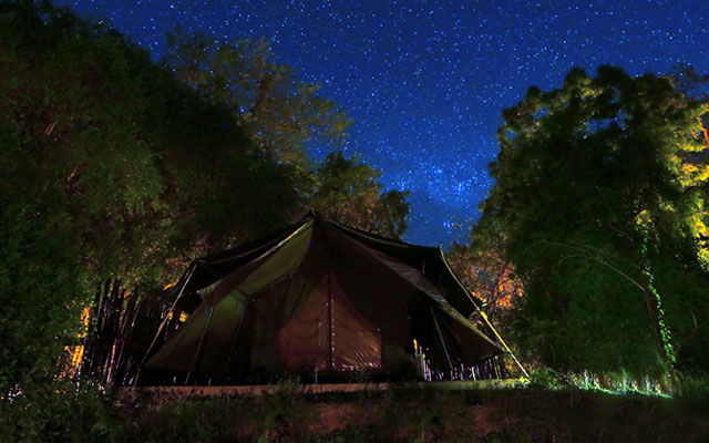 Luxury Safari Camping in Wilpattu National Park