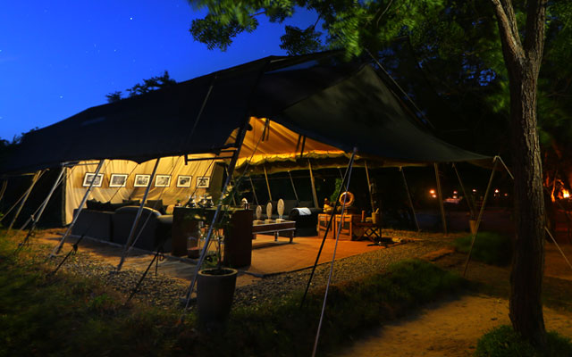 Luxury Safari Camping in Yala National Park